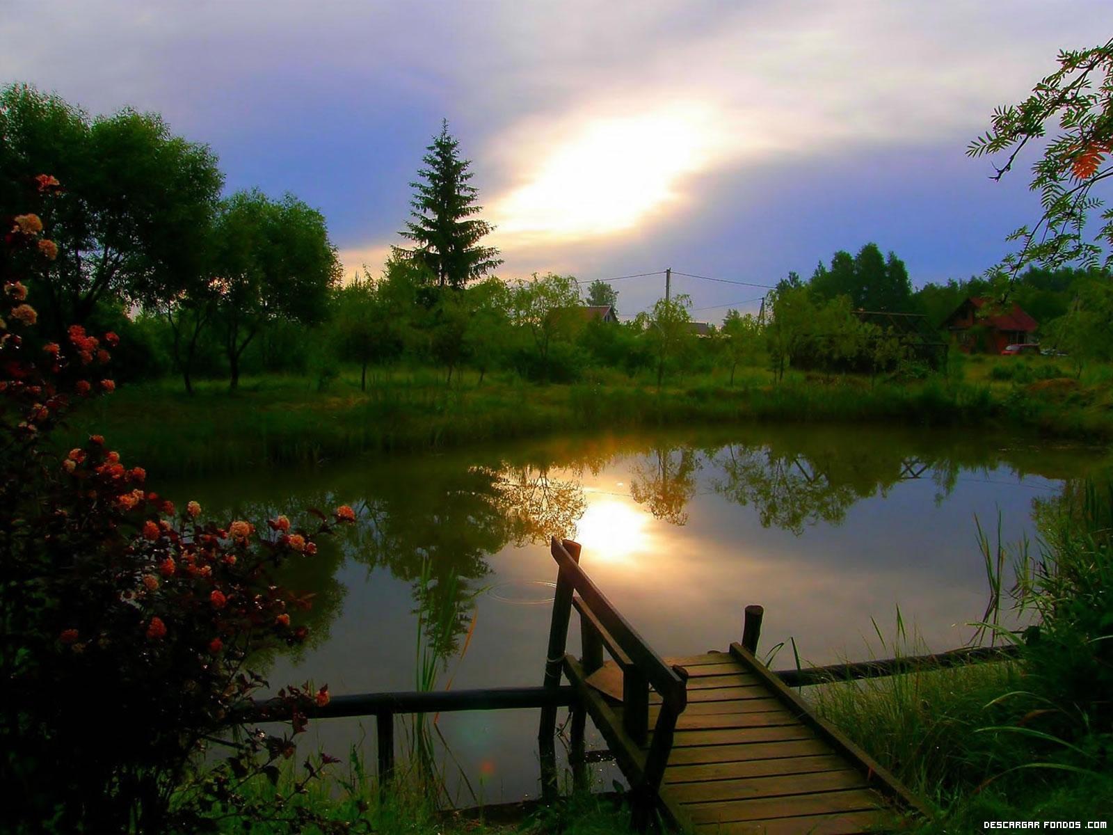 Un bello atardecer en el lago