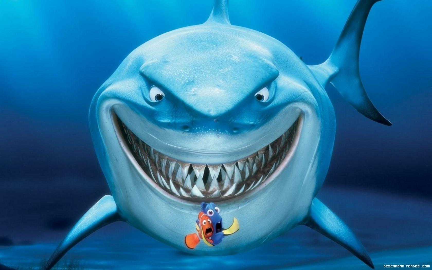 Tiburón y Nemo