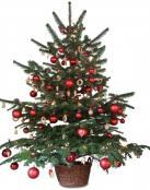 �rbol navideño en rojo