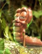 El curioso gusano