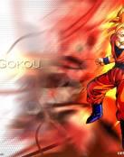 Goku sayayin.