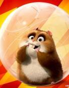Hamster Bolt.