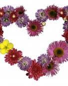 Guirnalda hecha de flores