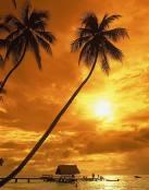 Relajación y descanso en la playa
