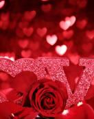 Rosas y amor