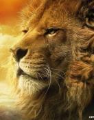 Paisaje del león.