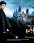 Harry Potter y el castillo de la magia