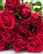 Ramo de rosas por San Valentín