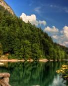 Lago en plena naturaleza