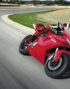 Ducatti roja