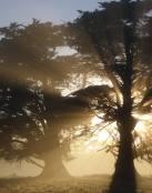 Reflejo de sol