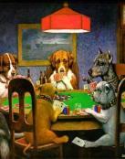 Perros en partida de poker